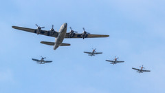 Privateer, 3 Mustangs and a Corsair (Hugh Dodson) Tags: sunday ypsilanti corsair mustang 19 usn b6s oldcrow p51d privateer aintmisbehavin willowrun northamerican usaaf vought consolidatedvultee g4m 6302 gentlemanjim f4u1d p51b b6p 92399 66302 n51kb nl551e nl551j n2871g p4y2 nx451fg thunderovermichigan2015 4324823 4414937 4415267