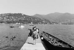 Sport Paralimpici a Como (sirio174 (anche su Lomography)) Tags: como sport sub giardini immersioni inail giardinialago dimostrazionepubblica sportparalmoci