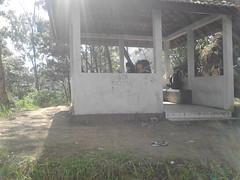 "Pengembaraan Sakuntala ank 26 Merbabu & Merapi 2014 • <a style=""font-size:0.8em;"" href=""http://www.flickr.com/photos/24767572@N00/26558719213/"" target=""_blank"">View on Flickr</a>"