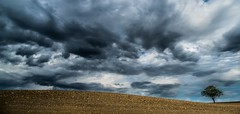 Hill (Jean-Luc Peluchon) Tags: sky cloud storm france tree field rural hill panoramic ciel thunderstorm nuage campaign campagne arbre impressive orage champ colline panoramique tourmente fz1000