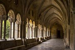 Claustro (Rigoletto Resndez) Tags: espaa europa cathedral catedral medieval viajes catalunya pasillo tarragona 50mm18 claustro gothicarchitecture edadmedia arquitecturagtica nikond600