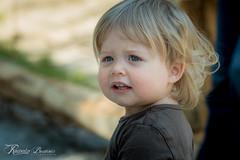 Abby (Romain Beauvois) Tags: abby maman parcomega 2ans
