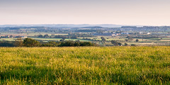 Blackmore Vale (Joe Dunckley) Tags: uk england field grass landscape farm hill farmland pasture crop dorset agriculture thomashardy stalbridge blackmorevale hardycountry northdorset kingstonmagna