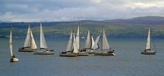 (Zak355) Tags: race boats scotland riverclyde sailing scottish sail yachts muster bute rothesay isleofbute