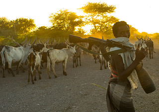 Afar tribe herder with a kalshnikov looking for his cows, Afar region, Afambo, Ethiopia
