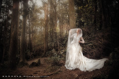 () Tags: wedding rednose stanley 711   kk                                         stimage