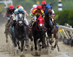 Preakness Day Races (SnyderPix) Tags: horses horse sports rain animal sport speed nikon mud action fast racing telephoto preakness horseracing f56 nikkor thoroughbred pimlico d5 sloppy slop 800mm supertelephoto nikond5 nikon800mm nikkor800mm