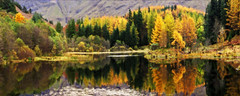 Lochan panorama (anthonyhepworth) Tags: autumn reflection scotland glencoe lochan