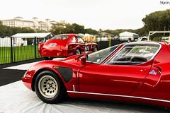 Alfas (Hilgram Photography) Tags: cars island italian 33 automotive alfa romeo amelia concours stradale tipo