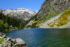 Estany Llong (Xaf) Tags: naturaleza mountain primavera nature trekking spring natura catalonia fujifilm catalunya montaa senderismo senderisme muntanya aigestortes valldebo parcnacionaldaigestortesiestanydesantmaurici fujifilmxworld esfujifilmx