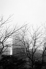 Fade to Fog (Tsarkon333) Tags: chicago film rain fog analog 35mm downtown kodak ia april retina 2016 kodakretinaia