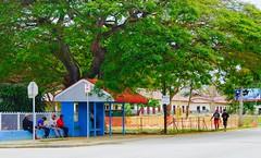 Tonga.