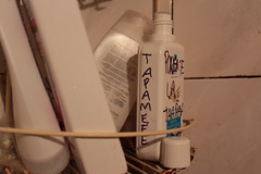 Convivencia (Elina Alba) Tags: digital canon bathroom indoor fotografa t5i
