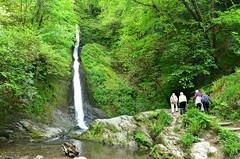 White Lady Waterfall, Lydford Gorge, Devon (Baz Richardson) Tags: devon nationaltrust dartmoor lydfordgorge whiteladywaterfall
