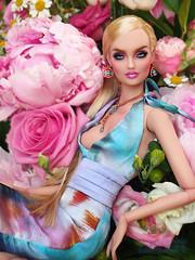 everything's coming up roses..... (kingdomdoll) Tags: pink roses beauty liberty kingdom bjd resin resinfashiondoll kingdomdoll dubunni