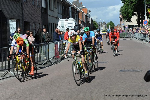 Herenthout (268)