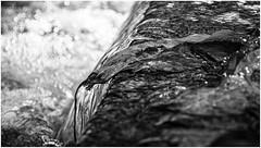 Water . (:: Blende 22 ::) Tags: blackandwhite bw white black water monochrome australia brisbane queensland australien wintertime sigma1770mm canon50d