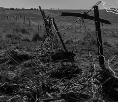 Washed up! (pardalite) Tags: rural fence wire hff