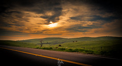 One for the Road (rohitsanu1) Tags: california road ca sunset sky cloud green yellow canon dark landscape dusk vibrant edited hill strip vignette lightroom canon24105mmf4l canon5dmarkii