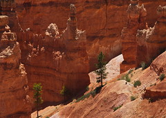 Fairyland Trailhead 4 (Dave Bezaire) Tags: utah unitedstatesofamerica brycecanyon slandscape vedit label~ rating4~ csouthwest