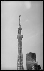 pearlette 1934  ReraPan100-127 (Tokyo Amigo) Tags: blackandwhite monochrome 1934 127film  4x65 skytree negativfilm rokuohsha pearlette     rerapan100