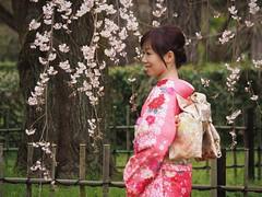 The beauty of Japan (M_Strasser) Tags: japan kyoto olympus cherryblossom sakura kimono kirschblten olympusomdem1