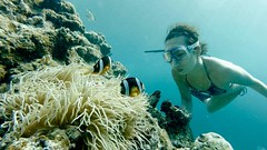 If you can dream it, you can do it. (xio_olx) Tags: japan snorkeling freediving okinawa 沖縄 maeda skindiving maedamisaki 真栄田岬 capemaeda スキンダイビング