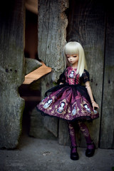 parsley (koroa) Tags: blue doll dress may v fairy lolita tiny bjd msd bluefairy feeriedoll feeriedollatelier