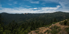 Mountain View - Muir Woods National Monument - Marin County - California - 08 June 2016 (goatlockerguns) Tags: sanfrancisco california county trees usa mountains west monument nature forest coast nationalpark woods natural hiking marin unitedstatesofamerica coastal national bayarea nationalparks sausalito muir millvalley northbay