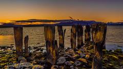 The sunset (The Happy Traveller) Tags: sunset sunrisesunset patagonia chile nature puertonatales torresdelpaine