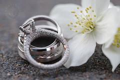 Rings (DavinG.) Tags: austin charuk christina dj davingphotography davingphoto fortsaskatchewan wedding macro ring