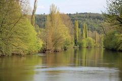 Un soir sur la Vzre (Yvan LEMEUR) Tags: france nature river landscape dordogne rivire arbres prigord paysage paysages calme vzre ambiance srnit sudouest aquitaine saintlonsurvzre