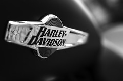 Harley-Davidson (Paddyllac) Tags: blackandwhite black art beautiful bike reflections logo photography 50mm cool nikon flickr artistic creative harley harleydavidson nikkor dslr niftyfifty d7000 nikond7000 paddyllac