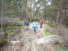 Covaleda - Pico Usera  (7) (Historia de Covaleda) Tags: espaa spain fiesta paisaje douro pinos soria historia pinar tradicion duero covaleda
