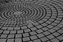 Cobbled Circles (pigpogm) Tags: circle pavement ground round cobbles