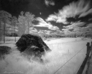 A windy day in IR