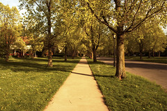 """The Parkways sidewalk • <a style=""""font-size:0.8em;"""" href=""""http://www.flickr.com/photos/59137086@N08/9373661432/"""" target=""""_blank"""">View on Flickr</a>"""