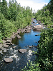 Temperance River Natl Forest