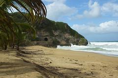Guajataca, Isabela, Puerto Rico (Oquendo) Tags: ocean sea costa beach nature coast mar puertorico playa atlantic tropic caribbean tunel litoral atlntico isabela caribe balneario oquendo guajataca