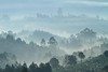 The Last Morning on Earth (Universal Stopping Point) Tags: morning trees mist nature silhouette misty fog landscape early haze hills uganda bananagrove rutoto