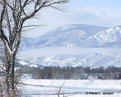 LE6A0858E (bigskywild) Tags: winter snow fog landscape march spring montana steam subzero stillwaterriver kenko14xtc canon100400mmlens nyemt bigskywild canon5dmiii paulaljensen march22014