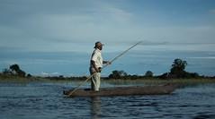 Jao - Botswana - mars 2014 (446) (Valerie Hukalo) Tags: africa wildlife delta safari botswana mokoro jao okavango afrique faune faunesauvage wildernesssafari hukalo valriehukalo