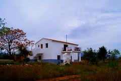 Fabulosa y grandiosa finca en Benidorm. Infórmese sin compromiso en su agencia inmobiliaria Asegil. www.inmobiliariabenidorm.com
