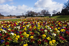 Stanley Park (juliereynoldsphotography) Tags: park flowers spring stanleypark juliereynolds juliereynoldsphotography