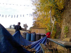 Fall_Talkoot_094