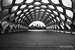 (5.13.14)-Ride To LPZ-3 (ChiPhotoGuy) Tags: wood city chicago skyline architecture spring framed structure northside pavilion lincolnparkzoo lincolnpark sustainable studiogang lpz chitecture enjoyillinois choosechicago