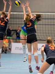 P2088081 (roel.ubels) Tags: new sport arnhem indoor volleyball tt groningen nexus volleybal apps eredivisie 2015 topsport papendal lycurgus valkenhuizen