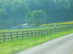 Fence In Kentucky (ilgunmkr - Thanks for 4,000,000+ Views) Tags: fence kentucky fencefriday