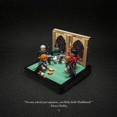 014 - Eat Slugs! (roΙΙi) Tags: harrypotter chamberofsecrets ron hermione draco malfoy brooms nimbus2001 nimbus2000 snails hogwarts rowling bricks magic vignette
