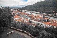 Heidelberg Castle (mahesh.kondwilkar) Tags: germany heidelberg avalon neckar heidelbergcastle romanticrhine heidelbergcity avalonwza avalonwzaday3